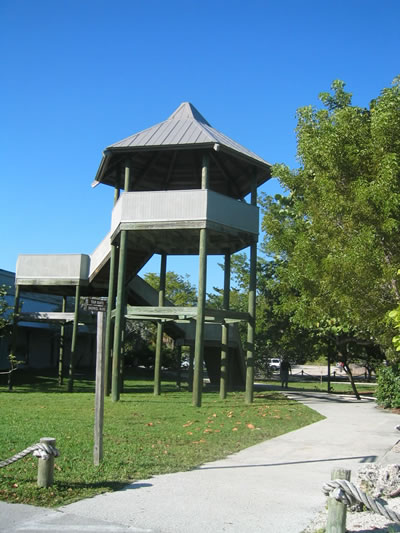 Florida_Pennekamp_State_Park.jpg