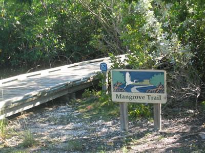 Pennekamp_state_Park_trails.jpg