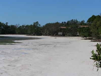 annes beach.jpg