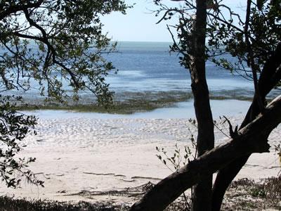 annes beach3.jpg