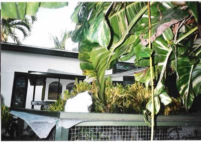 hemingway_house_gardens.jpg